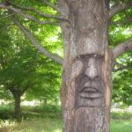 Le parc millénaire de l'écologique (fr)